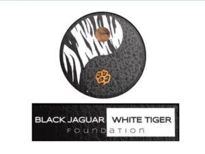 black-jaguar-white-tiger-1-638